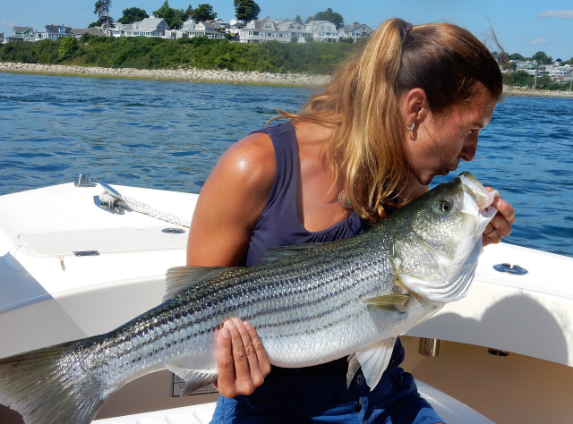 39in Striper caught out of Newburyport MA