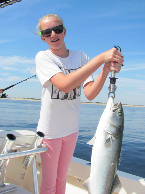 Plugging a bluefish