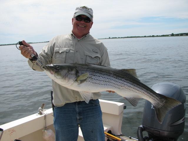 Merrimack river fishing reports for Ma fishing report