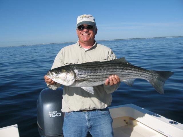 Summer job fishing charters for Fishing license ma