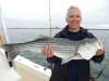 Live bait produces stripers on the Merrimack River