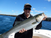 Live bait catches stripers in the Merrimack