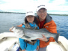 Merrimack River striper caught by Melody