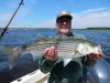 Merrimack striper caught by Mike