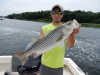Nick's striper caught in Newburyport MA