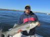 Eric's striped bass 8-15-13