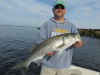 Eric's striped bass 8-7-13