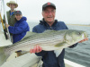 Uncle Jim's striped bass 7-28-13
