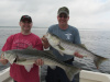 "Another 38"" striper 6-29-13"