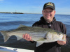 Mike Merwede's striped bass 6-16-14