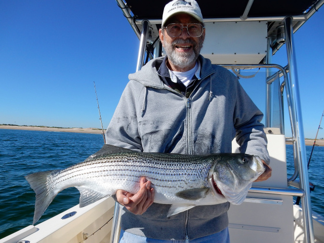 Dick Crosbie's Plum Island striper