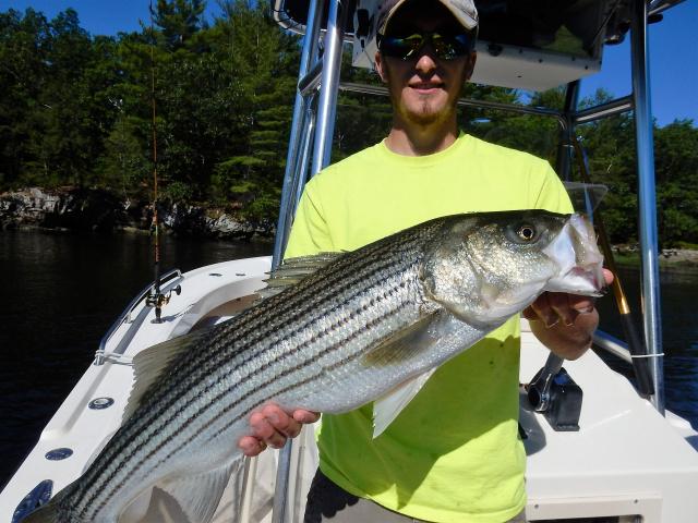 Summer Job Fishing Charters - Newburyport