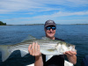Parker River striper caught by Peter Serrentino