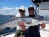 Merrimack River Striped Bass caught by Mike