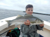 Merrimack River Striped Bass caught byCade Norris