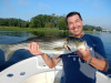 Merrimack River striper caught by Chuck Coppa