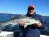 Newburport striped bass caught by Mark