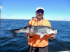 Plum Island striper caught by Mark Boynton