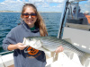 Merrimack River striper caught by Angie