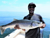 Plum Island beachfront striper caught by Lance